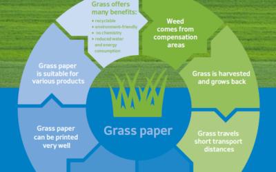 HERMA Grass Paper Self-Adhesive Materials