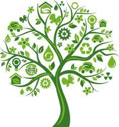 sustainability tree