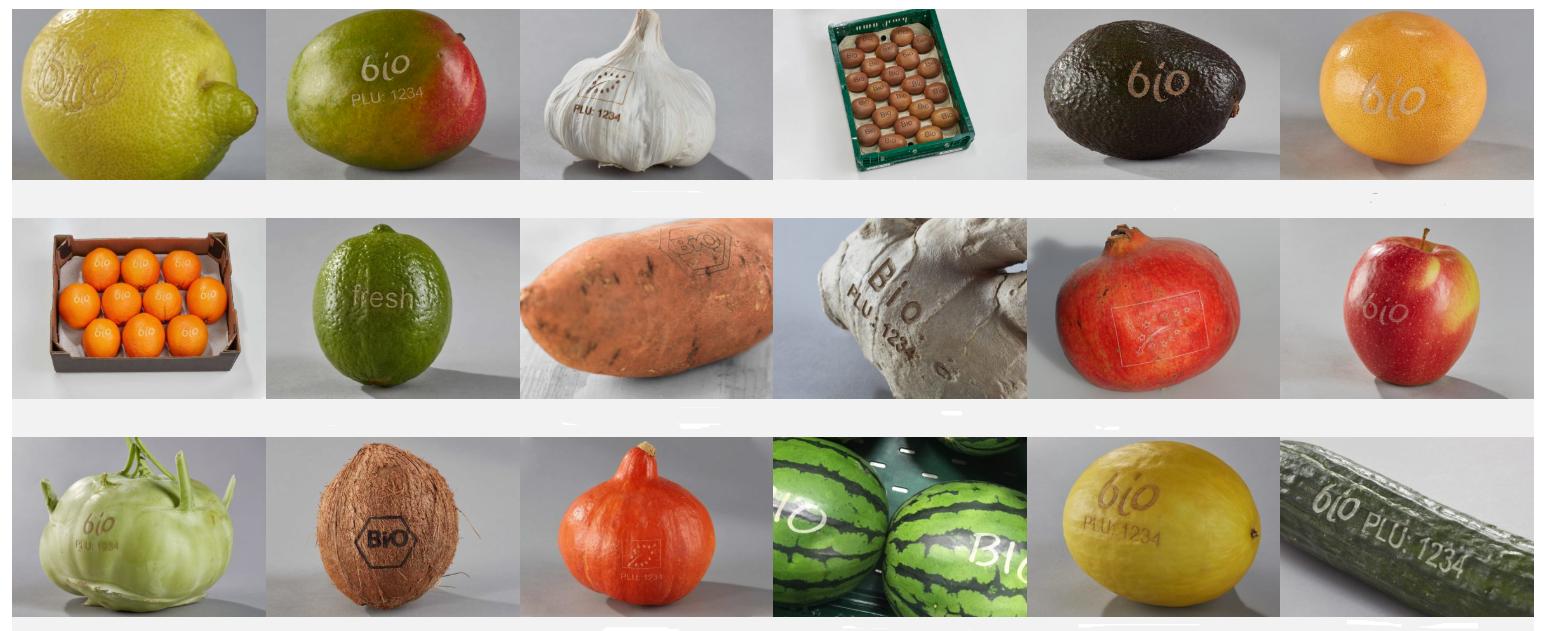 EcoMark Natural Fruit Branding